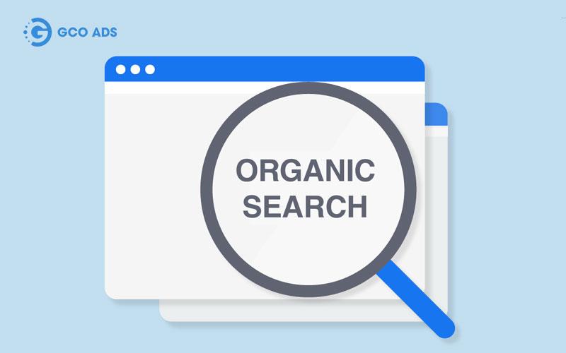 dịch vụ seo organic